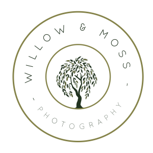 Edwardsville, IL Photographer